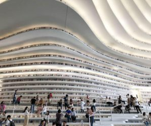 Studiare a Tianjin – L'esperienza di Sara